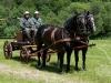 zawody zabytkowych konnych zaprzęgów strażackich 2012